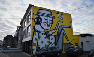 Muurschildering 'De Dromer' wint prijs en wordt verlicht