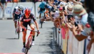 """Tour Down Under: onbekende Brit klopt Richie Porte en brengt Lotto-Soudal in staat van euforie: """"Wat een binnenkomer!"""""""