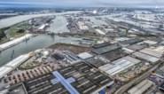 Lange files in Waaslandhaven door computerproblemen bij containerterminalbeheerder