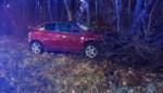 Auto komt langs struiken van E313 terecht in Bilzen