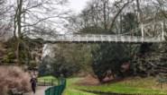 """Stad zoekt centen voor… rotspartijen in Stadspark: """"Hier namen veel koppels hun trouwfoto's'"""