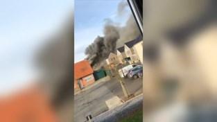 VIDEO. Hond gestorven na zware woningbrand in Bree