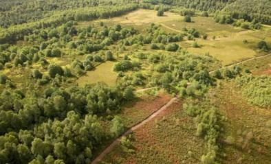 Nationaal Park Hoge Kempen wordt omvangrijkste natuurgebied in Vlaanderen