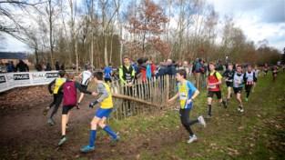 Crosscup Rotselaar: Belgisch en Vlaams kampioenschap veldlopen aan de Plas