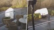 Chauffeur vergeet één detail tijdens levering, maar dat heeft desastreuze gevolgen