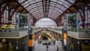 """""""'Treinsurfer' in Antwerpen-Centraal probeerde eerst deuren van trein te openen en is dan gevallen"""""""