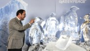 Greenpeace zet smeltende ijspinguïns neer in het federaal parlement