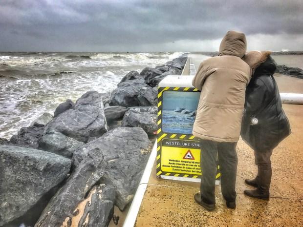 Rukwinden tot 120 kilometer per uur: kust zet zich schrap voor eerste zware voorjaarsstorm