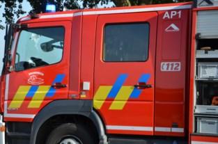 Wagen brandt uit op inrit, niemand gewond