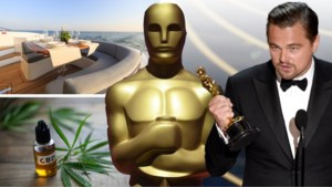 Cruise van 70.000 euro, cannabisolie en plastische chirurgie: dit zit in de goodiebag van de Oscars