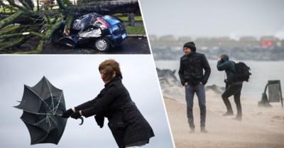Storm Ciara is onderweg naar ons land: hoe zal je het voelen en wat kan je doen om je te beschermen?