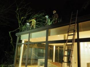 Boom vernielt achterbouw woning aan Stationstraat