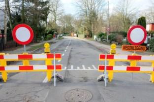 Boom dreigt op Hoogboomsesteenweg te vallen, gemeente sluit straat af