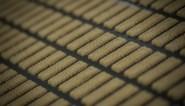 Lotus verkoopt miljard koekjes in de VS