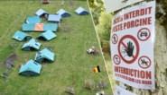 """Varkenspest verpest weer tientallen zomerkampen: """"Als het nog erger wordt, zitten we met een behoorlijk probleem"""""""