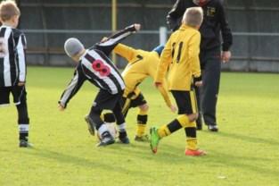 Aankoop voetbalterrein Excelsior Balgerhoeke gaat voorlopig niet door, stadsbestuur wil mogelijk addertje onder het gras vermijden