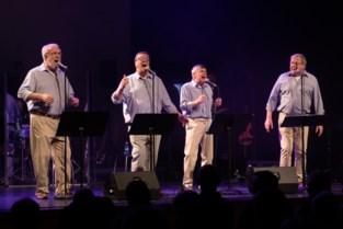 Oudste boysband van Vlaanderen viert jubileum