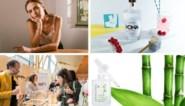 TIPS. Belgische mocktails, bamboe voor op je huid