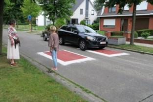 Gemeente wil trager verkeer in Kasteeldreef, maar twijfelt nog over aanpak