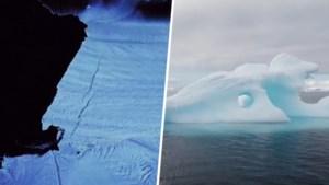 """Gletsjer 'ter grootte van Malta' scheurt af: """"Nog nooit was het zo warm op Antarctica"""""""