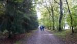 Wandelaars en dieren krijgen voorrang in Clingse bossen