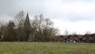 Minder sociale woningen aan Laekenweide