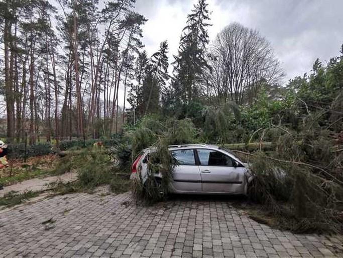Storm Dennis: warmste 16 februari ooit,  mét rukwinden tot 101 km per uur en heel wat schade