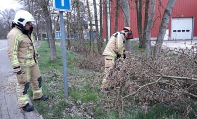 Brandweer overstelpt met oproepen vanwege storm Dennis: bijna vijfhonderd interventies in enkele uren