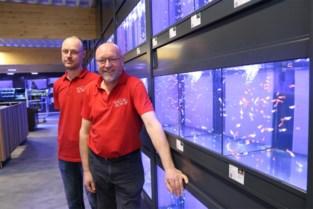 Vernieuwde vijverwinkel is nu de grootste in de Benelux, alleen deze 'vreemde vogel' is niet te koop