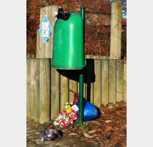Waardering voor Hamse milieuvrijwilligers