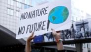 Belgische regeringen buigen zich woensdag over klimaatstrategie voor 2050