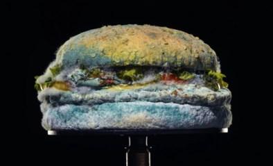 Burger King probeert in nieuwe reclamespot klanten te verleiden met… een beschimmelde Whopper