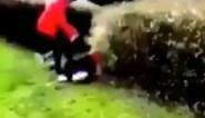 """Opnieuw vechtfilmpje opgedoken, nu in Wevelgem: """"De daders worden opgespoord"""""""