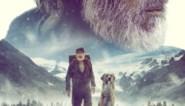 RECENSIE. 'The call of the wild': Als een hond wil acteren *