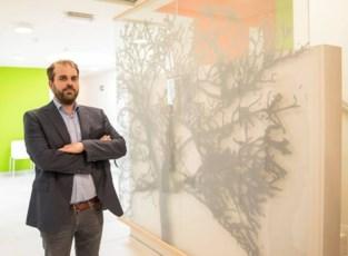 Betreurde Vollanderboom krijgt nieuw leven als 'wensboom'