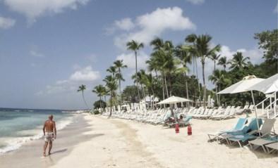 Vakantie in een utopisch paradijs in de Dominicaanse Republiek