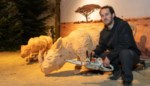 """Dankzij Sander (29) heeft Gent na 115 jaar weer een dierentuin: """"Ik ben een zagevent, mijn vrouw kan erover meespreken"""""""