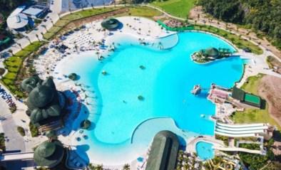 Fijne vakantie in Thailand wordt nachtmerrie: driejarig jongetje verdrinkt nadat hij in zwembad valt