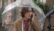 RECENSIE. 'A rainy day in New York' van Woody Allen: Romcom 2.0 ***