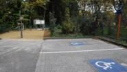 App helpt bij strengere aanpak van misbruik gehandicaptenparkings