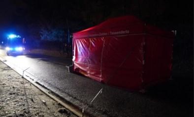 Dodelijk ongeval met asielzoekster: dan toch geen vluchtmisdrijf, getuige wordt verdachte