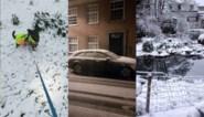 Delen van Vlaanderen ontwaken onder sneeuwtapijt: dit zijn jullie mooiste foto's