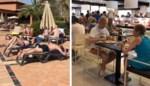 """""""Welk coronavirus?"""" Beelden tonen hoe gasten in hotel op Tenerife genieten van zon en gratis champagne"""