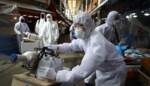 Coronavirus komt steeds dichterbij, zeven vragen beantwoord