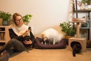 VIDEO. Schattiger wordt het niet: baasje Anouk (30) laat vier opvallende huisdieren 'onafscheidelijk' samenleven