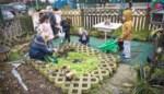 Groen boos over 25.000 euro minder subsidies voor klimaatprojecten op school