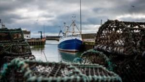 Belgische vissers willen toegang tot Britse wateren behouden na Brexit