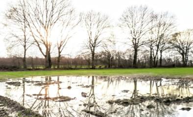 Regen, regen en nog eens regen. Maar toch blijven grondwaterstanden te laag