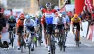 Dit zijn onze sterren voor Kuurne-Brussel-Kuurne: sprinters met inhoud maken veel kans