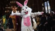 Stella McCartney ruilt modellen in voor pluchen dieren